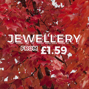 Jewellery - From £1.59