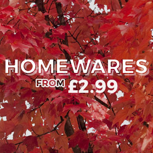 HOMEWARES - From £2.99